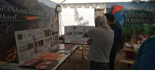 El yacimiento de Ciriyuelos y el Torrerón de Chumillas (Cuenca) se abren al mundo con su presencia en la feria MADbird