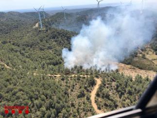 Sucesos.- Un incendio quema vegetación en El Perelló (Tarragona)