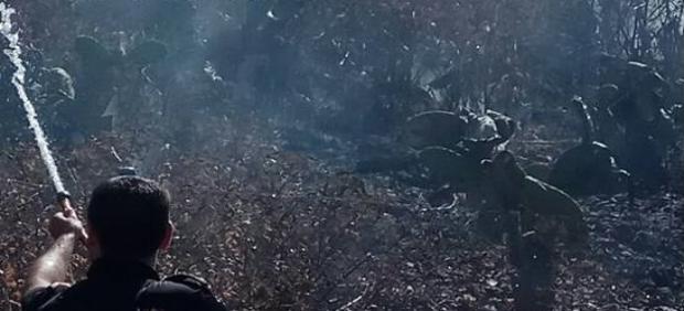 Granada.- Sucesos.- Cuatro agentes de Policía Nacional evitaron la propagación del incendio del Sacromonte del lunes