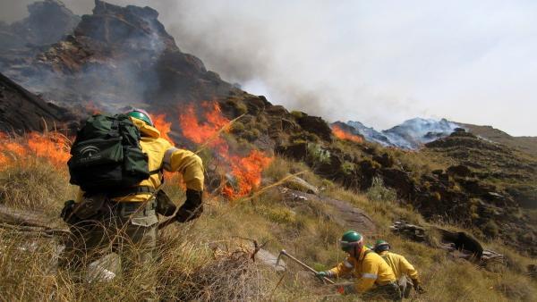 Málaga.- Sucesos.- Evoluciona favorablemente el incendio forestal declarado en un paraje de Benalmádena