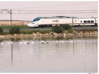 Cs pregunta al Gobierno cómo va a poner fin a los 'continuos retrasos' de los trenes de Madrid con la provincia.