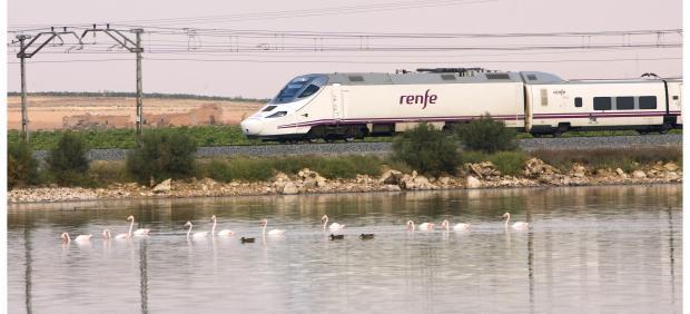 Cádiz.- Cs pregunta al Gobierno cómo va a poner fin a los 'continuos retrasos' de los trenes de Madrid con la provincia