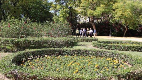 Sevilla.- La Glorieta del Canódromo del parque Amate incorpora seis plantaciones circulares de flores de temporada