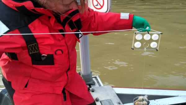 Azti participa en el proyecto europeo Monitool que valida nuevas herramientas de medición de la calidad de las aguas