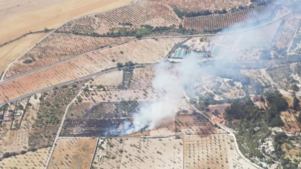 Sucesos.- Declarado un incendio agrícola en Marratxinet