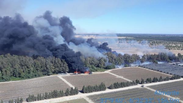 Huelva.- Sucesos.- Declarado un incendio forestal en el Arroyo de la Cañada de Almonte