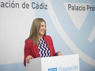 Cádiz.-26M-M.- El PSOE gana la Diputación con 14 diputados, pero necesitará apoyos para poder gobernar