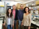 Sevilla.- Investigadores de la US desarrollan biomembranas con cáscaras de crustáceos para mejorar el análisis en orina