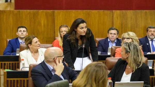 Cádiz.- Rodríguez (Cs) dice que 'las 29 banderas azules son un importante impulso para la provincia'