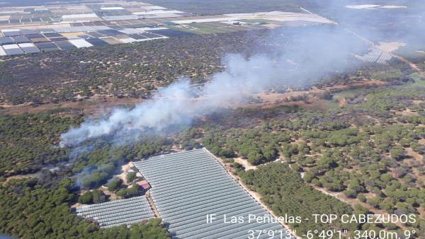 Huelva.- Sucesos.- Declarado un incendio forestal en el paraje de Las Peñuelas de Moguer