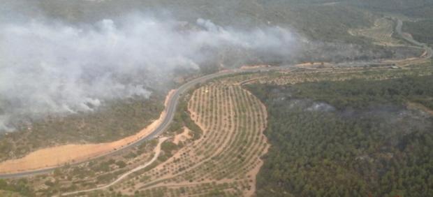 Incendio forestal en Maials (Lleida) junto a la C-12