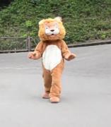 Hombre disfrazado de león