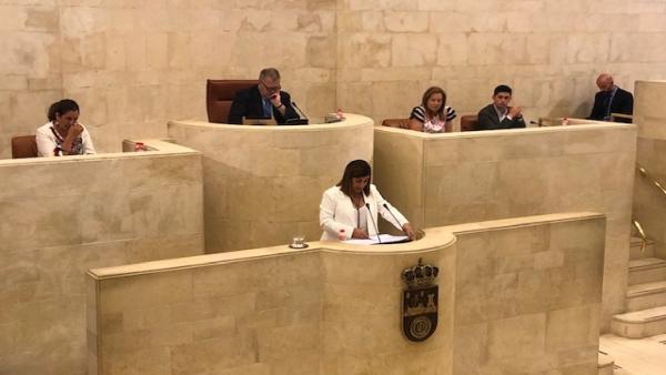 La presidenta del PP de Cantabria y portavoz del grupo popular, María José Sáenz de Buruaga