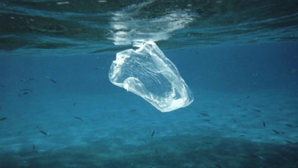 Residuo flotante en el mar.