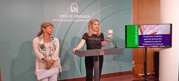 Np, Foto Y Audio Ana Mestre Guía Rápida Del Protocolo De Actuación Sanitaria Ante La Violencia De Género