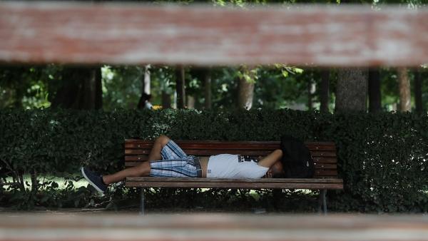Media España, inmersa en una ola de calor