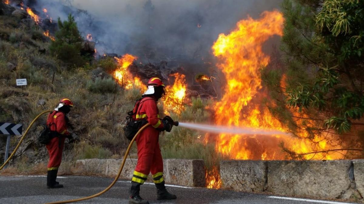 Directo | Cinco grandes incendios activos: empeora la situación en Ávila, Toledo y Madrid