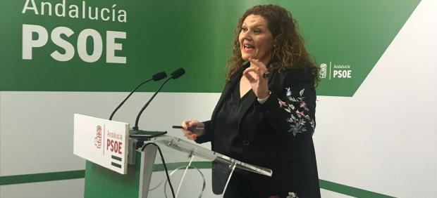 La parlamentaria socialista Araceli Maese