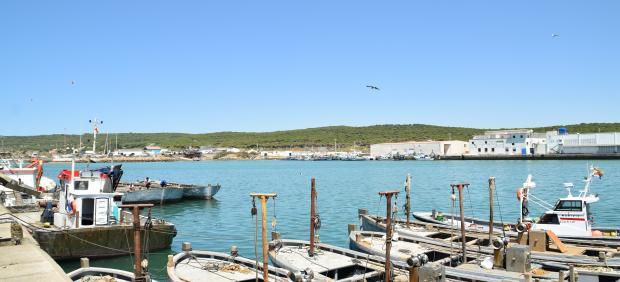 Imagen del puerto de Barbate (Cádiz)