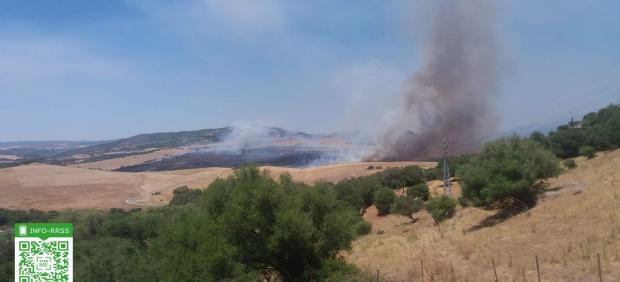 Incendio en Alcalá de los Gazules