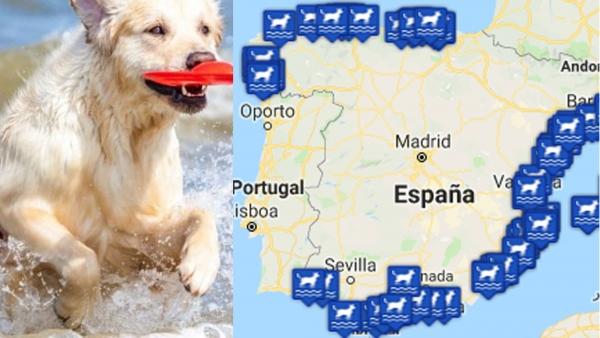 Mapa de las playas para perros en España