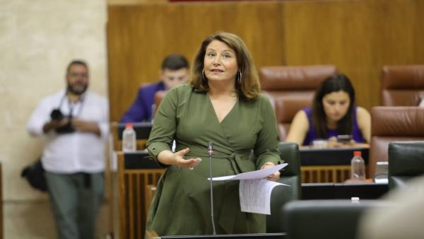 La consejera de Agricultura, Carmen Crespo, en el Parlamento