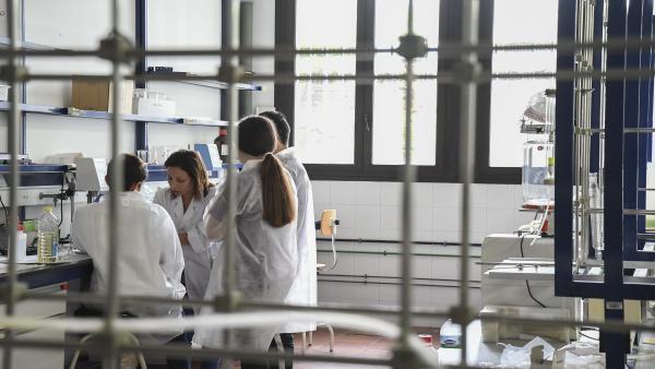 Jóvenes participan en el Campus de la Ciencia y la Tecnología de Canarias 2019 desarrollan un proyecto de investigación