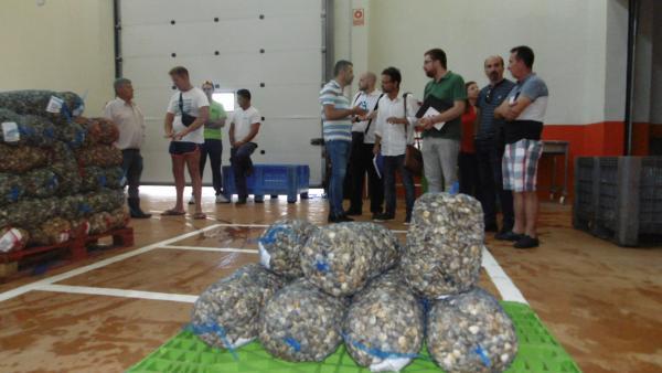 Representantes de Adelante Huelva y Unidas Podemos en la lonja de Punta Umbría.