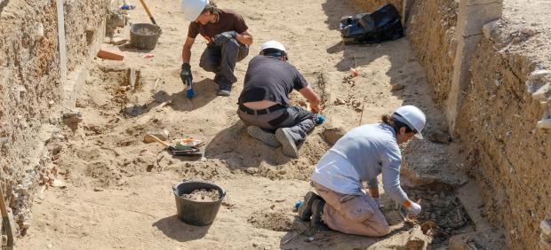 Trabajos de exhumación en Cementerio de San José en Cádiz