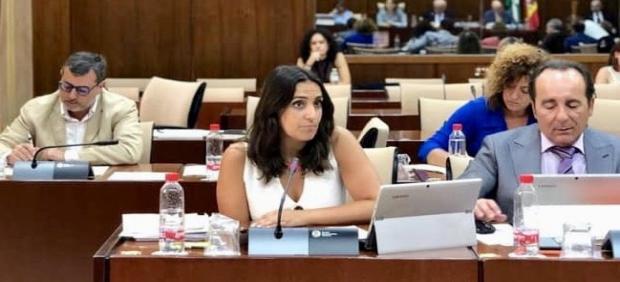 Beatriz Jurado (PP) en la Comisión de Salud del Parlamento de Andalucía.