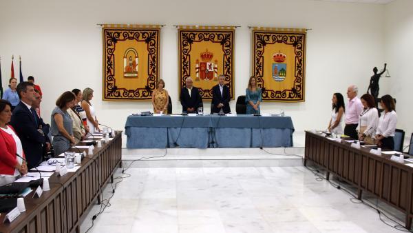 Sesión de pleno del Ayuntamiento de Estepona