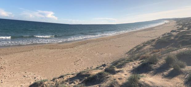 Playa de El Pinet, Elche