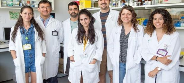 Equipo de investigadores de Parapléjicos
