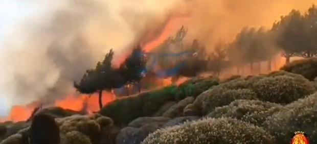 Incendio en Sotillo de la Adrada