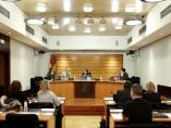 Comisión Cortes