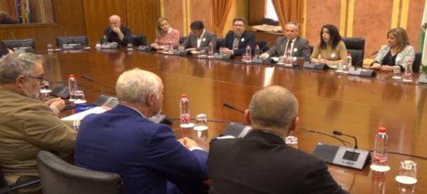 La presidenta del Parlamento de Andalucía, Marta Bosquet, se reúne con la Mesa en Defensa del Ferrocarril de Almería (Foto de archivo).
