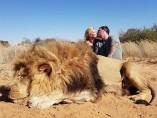 Una pareja se besa sobre el cadáver de un león