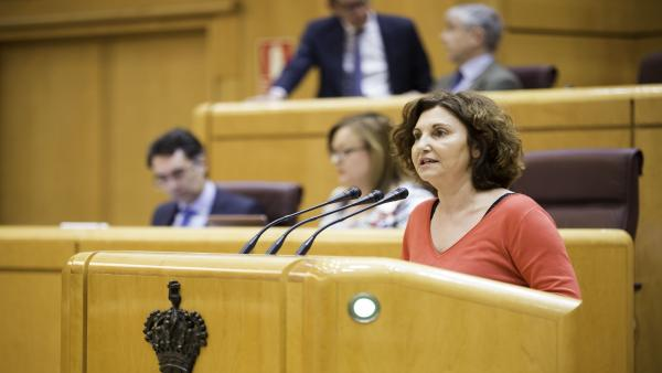 Pilar Garrido, diputada de Unidas Podemos