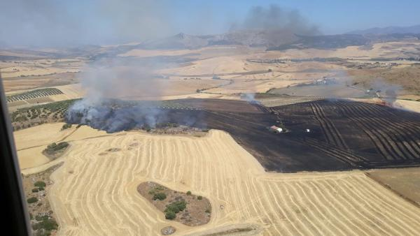 Imagen del incendio agrícola declarado en Cañete La Real (Málaga)