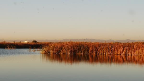 El lago de la Albufera de València.