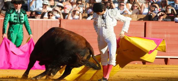 Los animalistas consideran que la Plaza de Toros de Palma no está en condiciones de cumplir la ley
