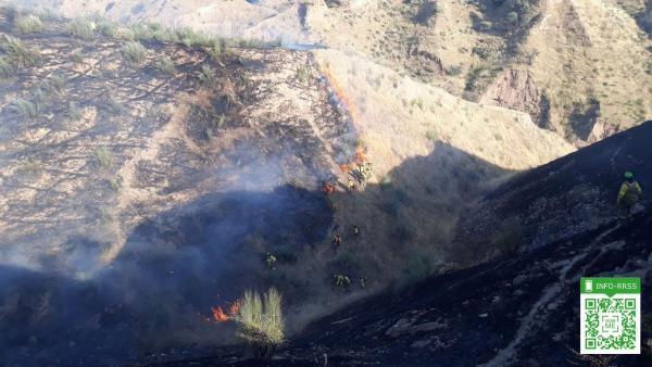 Efectivos del Infoca luchan contra las llamas en el cerro de Granada afectado por el incendio