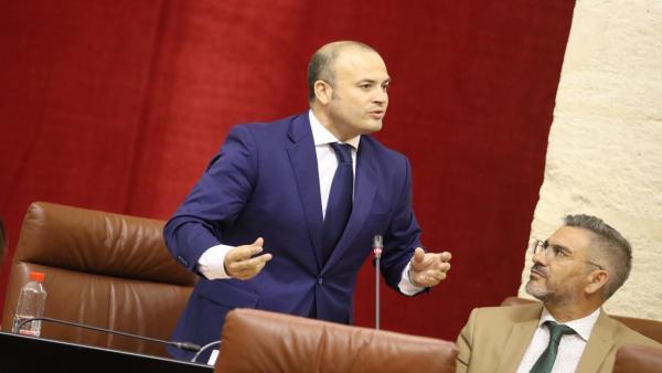El diputado de Ciudadanos (Cs) por la provincia de Huelva en el Parlamento andaluz y vicepresidente de la cámara, Julio Díaz