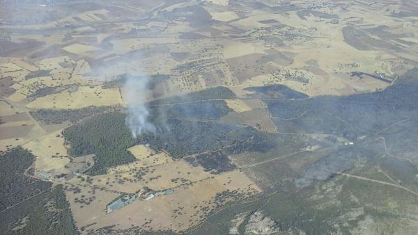 Incendio de Puertollano.