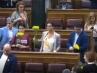 Margaritas amarillas en el Congreso.