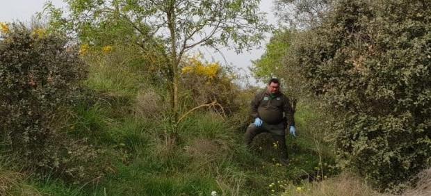 Lugar en el que los Agentes Rurales encontraron el cadáver del perro.
