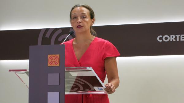La diputada del PP, Carmen Susín.