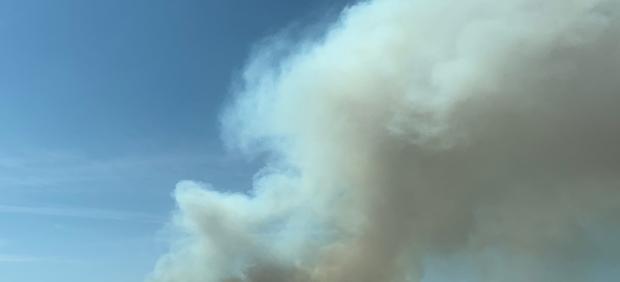 Incendio forestal originado el 30 de julio en el término municipal de Barchín del Hoyo (Cuenca)