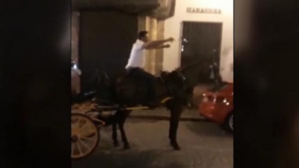 Cochero de caballos en Sevilla