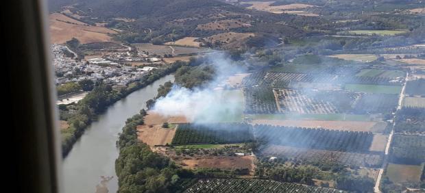 Imagen del incendio en San Roque